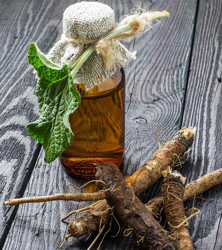 African herbs for hair growth. Why Does Burdock Root Help Hair Grow?