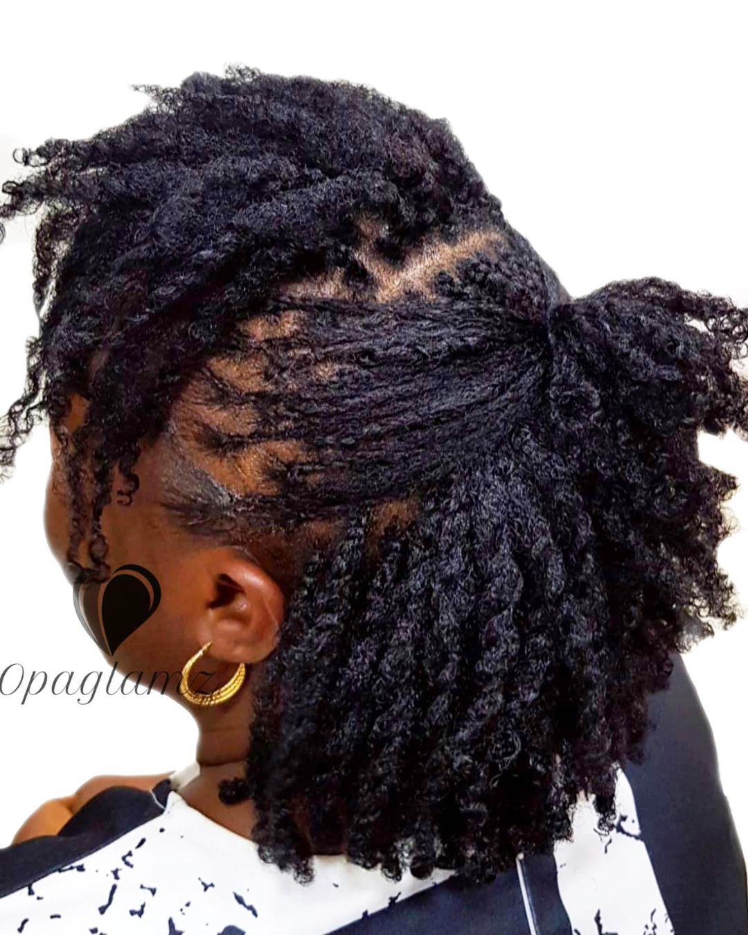 Black hairstyles twist braids for women NHP Approved
