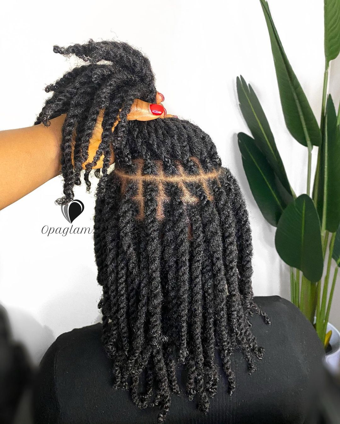 Black hair styles african hair braiding styles pictures