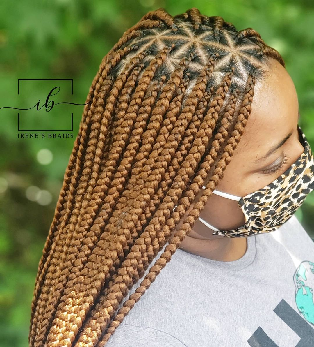 braided hairstyles NHP Approved