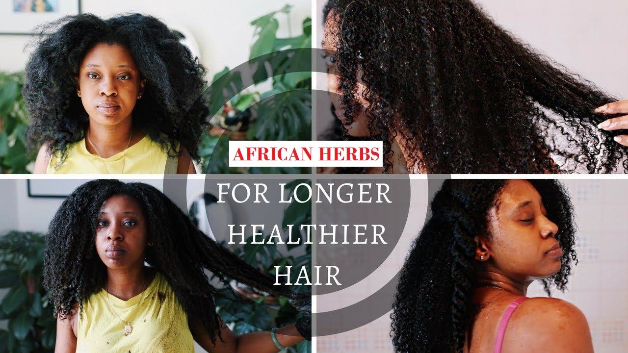 African herbs for hair growth - henna
