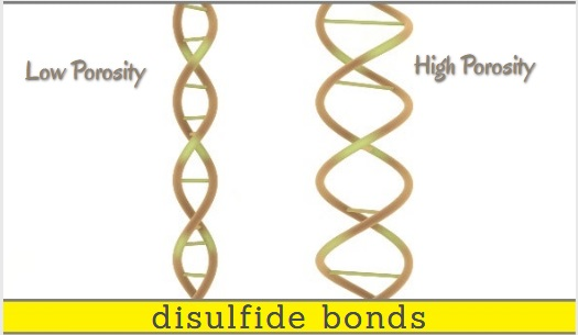 does low porosity hair need protein - disulfide bonds