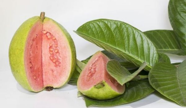 food for hair growth guava