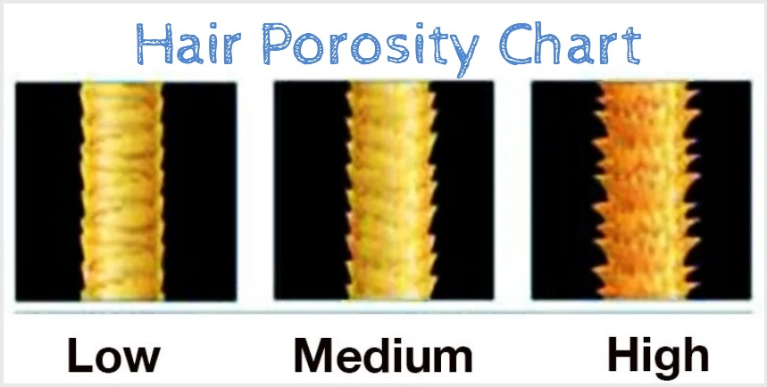 hair-porosity-chart-natural-hair-products