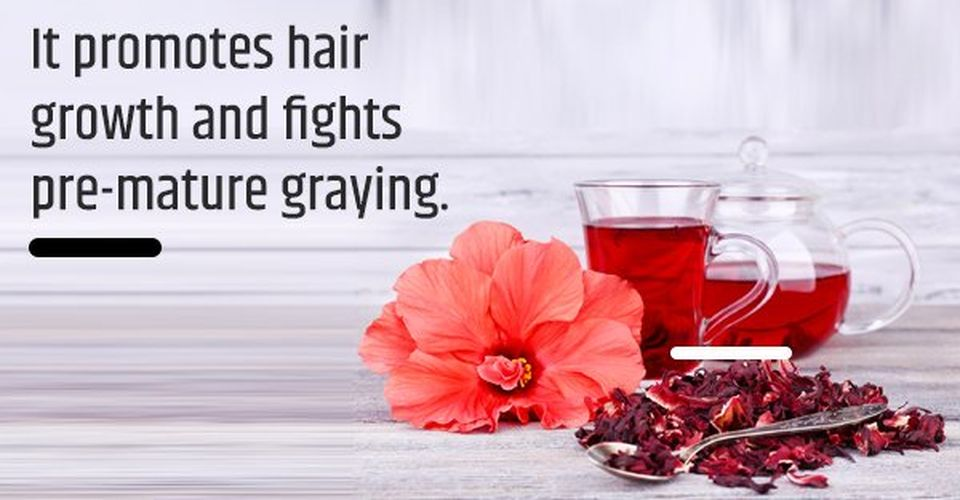 Hibiscus African herbs for hair growth also prevents pre-mature graying