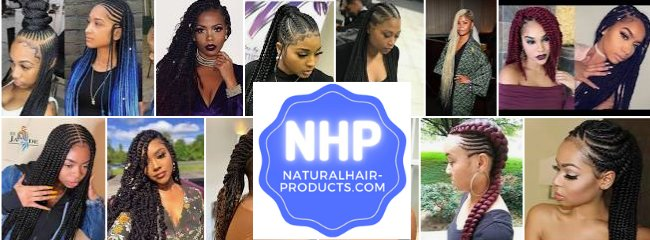 braided hairstyles NHP Approved 112