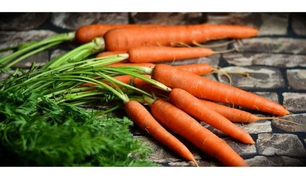 foods for hair growth carrots