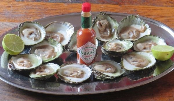 Food for hair growth oysters