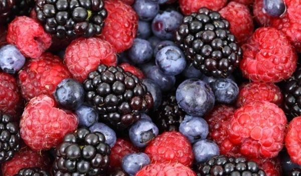 foods for hair growth berries