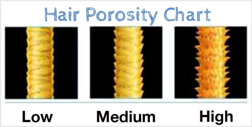 hair-porosity-chart-natural-hair-products